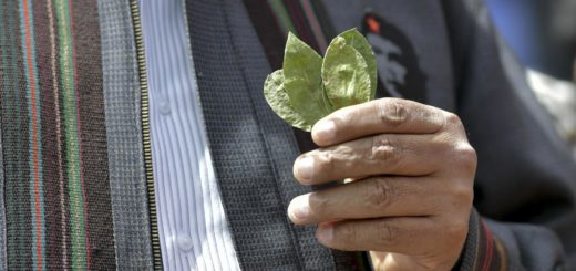 La hoja de ruta de Evo para consolidar el desarrollo de Bolivia ...